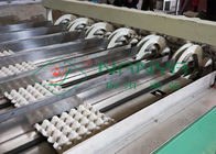 Large Capacity Pulp Molding Equipment / Egg Tray Egg Carton Production Line
